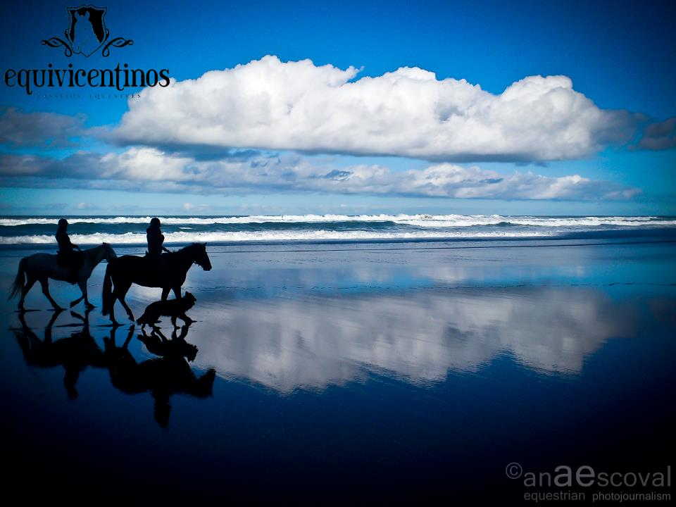 horseback-riding-algarve-7